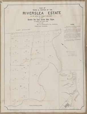 Plan, Riverslea Estate portions for sale; Herald Lithography; Walker, George; Walker, George