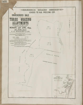 Plan, Napier Harbour Board reserve sections leased to Nelson brothers; Herald Lithography