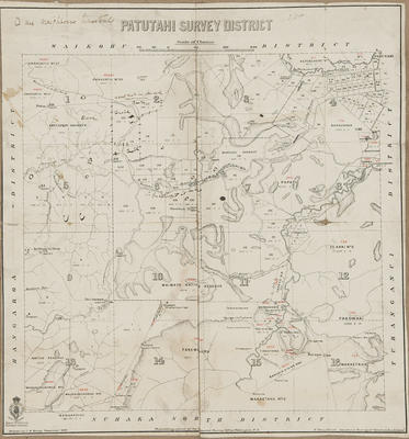 Cadastral map, Patutahi Survey District
