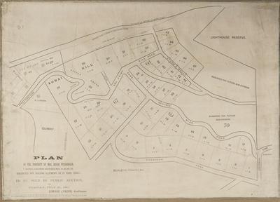 Plan, Napier; Daily Telegraph; Price, Robert