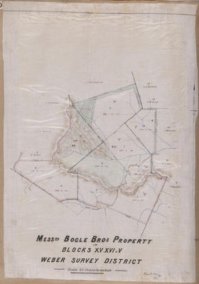 Plan, Messrs Bogle Brothers property; Kennedy Brothers