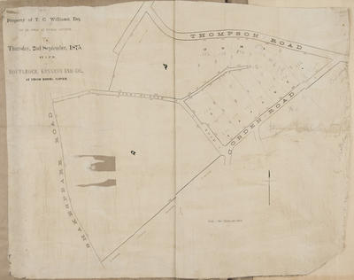 Plan, property of T C Williams for sale, Napier