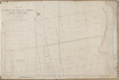 Plan, farm lots, Hastings