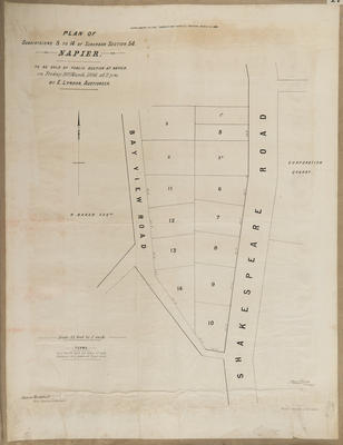 Plan, Napier sections for sale; Jarman, Alfred; Herald Lithography; Hawke's Bay Herald; Rochfort, James