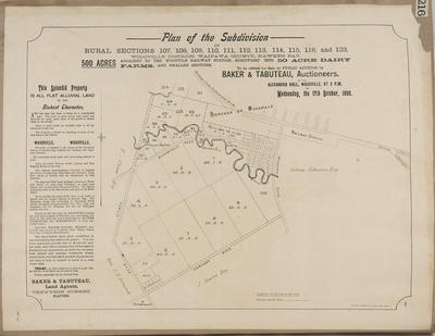 Plan, Woodville district land for sale; Dinwiddie, Walker and Company Limited