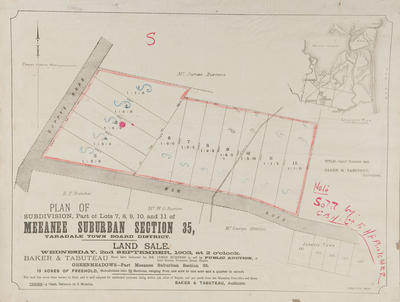 Plan, Meeanee suburban sections for sale