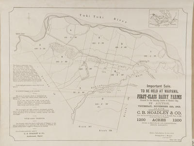 Plan, First class dairy farms for sale