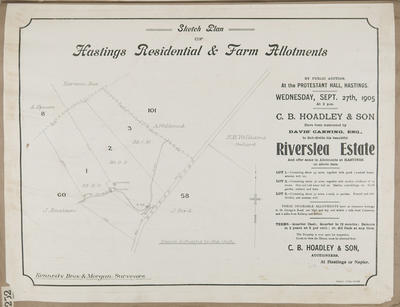 Plan, Hastings residential and farm allotments for sale; Herald Lithography; Kennedy Bros & Morgan Licensed Surveyors