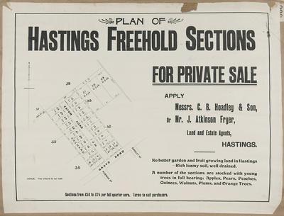 Plan, Hastings freehold land for sale; C M Banks Ltd