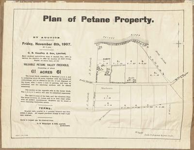 Plan, Petane property for sale