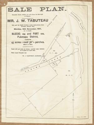 Plan, Puketapu district land for sale