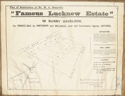 Plan, Lucknow Estate land for sale