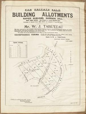 Plan, building allotments in Napier for sale; Herald Lithography; Rochfort & Son