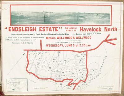 Plan, Endsleigh Estate land for sale