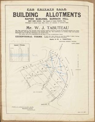 Plan, Building allotments, Barrick Hill