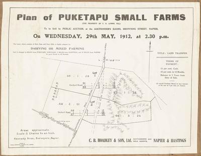 Plan, Puketapu small farms for sale