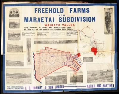 Plan, Freehold farms in Maraetai for sale; Wilson & Horton Ltd; Halse