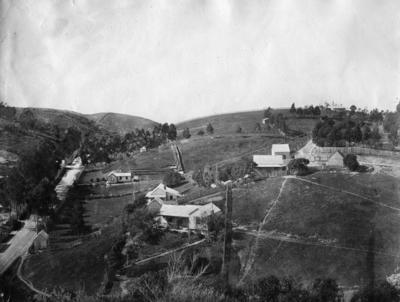 Napier Hill, Napier