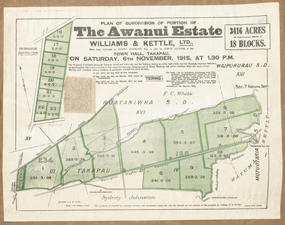 Plan, Subdivision of portion of the Awanui Estate; Herald Lithography; Saxby, A G