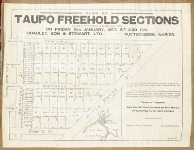 Plan, Taupo freehold sections for sale