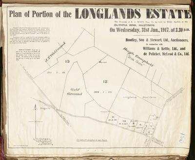 Plan, portion of Longlands Estate for sale; Herald Print; Morgan, James Rice
