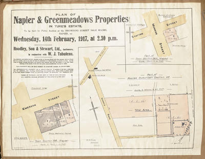 Plan, Napier and Greenmeadows properties for sale