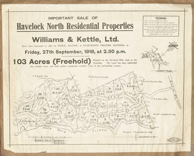 Plan, Havelock North residential properties for sale; Hawke's Bay Herald; Rochfort Son & Thompson