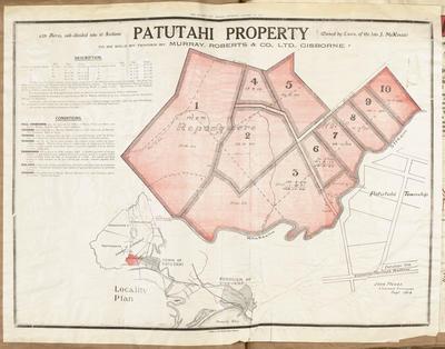 Plan, Patutahi property for sale