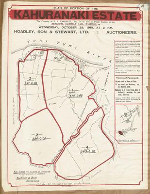 Plan, portion of the Kahuranaki Estate land for sale