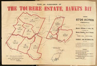 Plan, subdivision of the Tourere Estate
