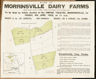 Plan, Morrinsville dairy farms for sale