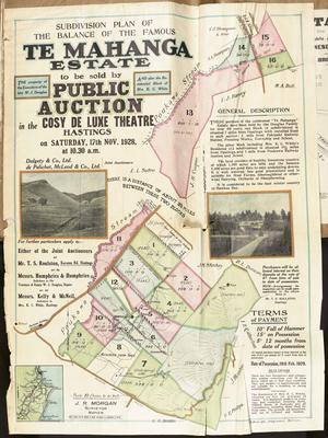 Plan, Te Mahanga Estate land for sale; C M Banks Ltd; Morgan, James Rice