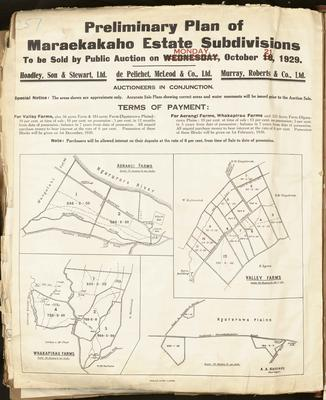 Plan, Maraekakaho Estate land for sale
