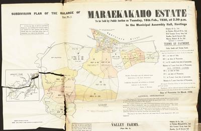 Plan, Maraekakaho Estate Subdivisions