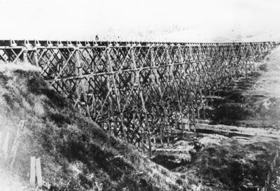 Ormondville Viaduct, Hawke's Bay