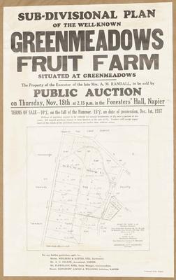 Plan, Greenmeadows fruit farms for sale