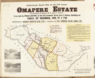 Plan, Omapere Estate land for sale; Rochfort, Guy; Ferguson & Osborn Ltd