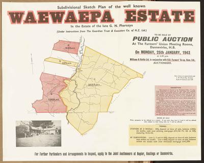 Plan, Waewaepa Estate land for sale