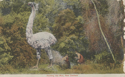 Postcard, Hunting the Moa, New Zealand