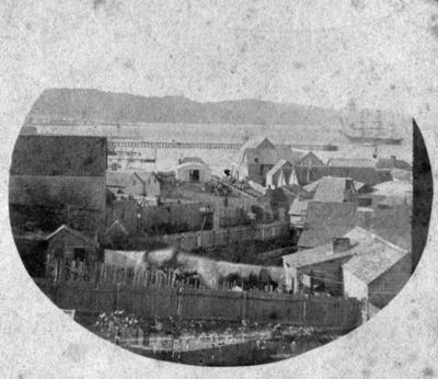 Northerly View of Te Aro, Wellington