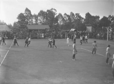 Basketball Game, Hawke's Bay