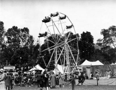Ferris wheel, A & P Show