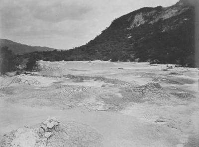 Mud spring, Rotorua