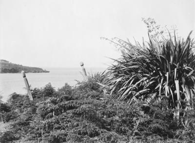Jerusalem Bay, Lake Taupo