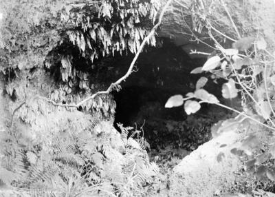 Cave entrance, Tarawera, Hawke's Bay