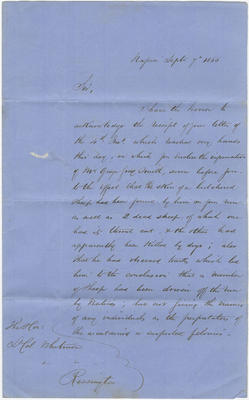 Collection of Hawke's Bay Museums Trust, Ruawharo Tā-ū-rangi, [78463]