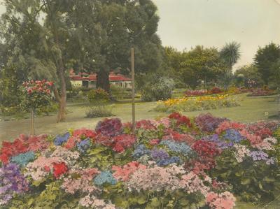 Gardens, McLean Residence, Napier