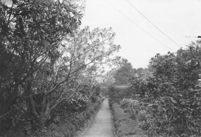 St Ruadhan, The Terrace, Wellington