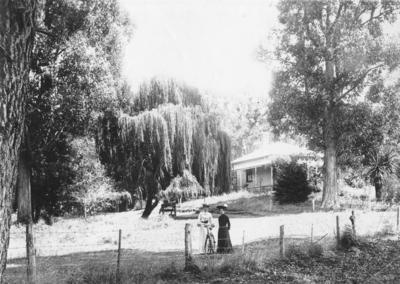 House, Pāterangi, Waikato