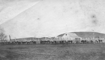 Chief Tareha's House, Whakairo Pā, Waiohiki